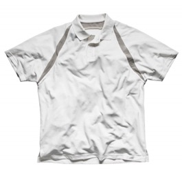 Dickies Eisenhower Painters Pro Polo Shirt